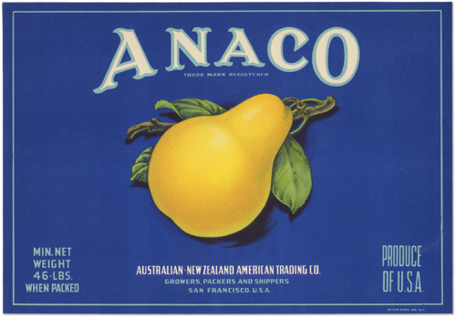 Anaco pear card, vintage split-serif type with a single glowing yellow pear.