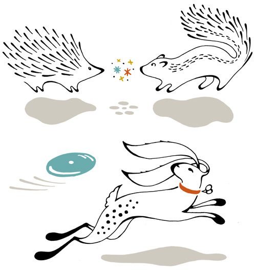 Pen and ink hand drawn animals. A porcupine and skunk meet and sparks fly. A leaping fetching bunny rabbit chases after a frisbee.