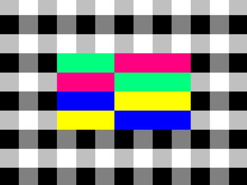 summer-programming-5