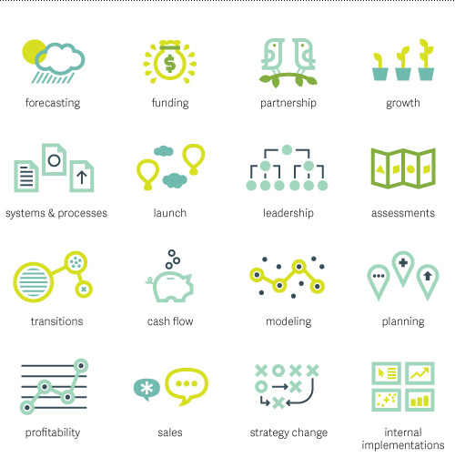 business icons for forecasting, funding, partnership, growth, documentation, launch, leadership, planning, transitions, cash flow, modeling, profitability, sales, strategy change, and internal implementations.