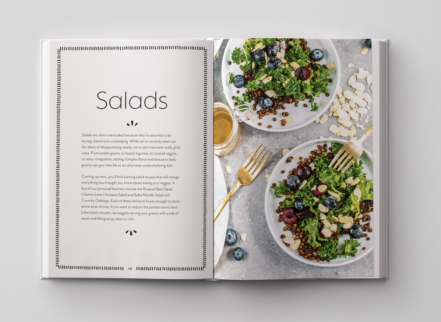 frugal vegan cookbook salad introduction page for healthy vegan recipes